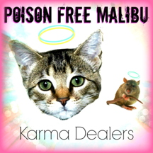 Thank you to our good friends Karma Dealers who wrote and sang this song for us!